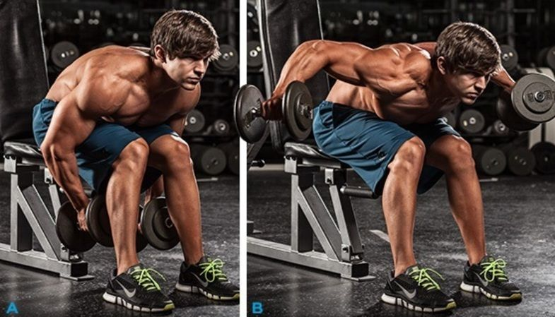 Seated bent over rear delt fly